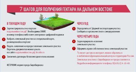 7 шагов для получения гектара