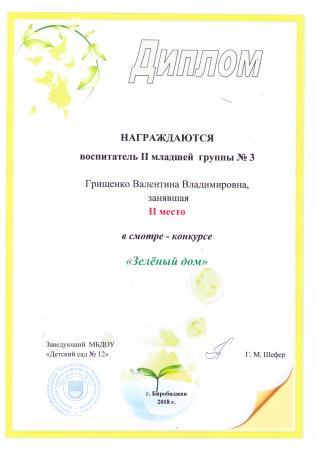 Диплом 1